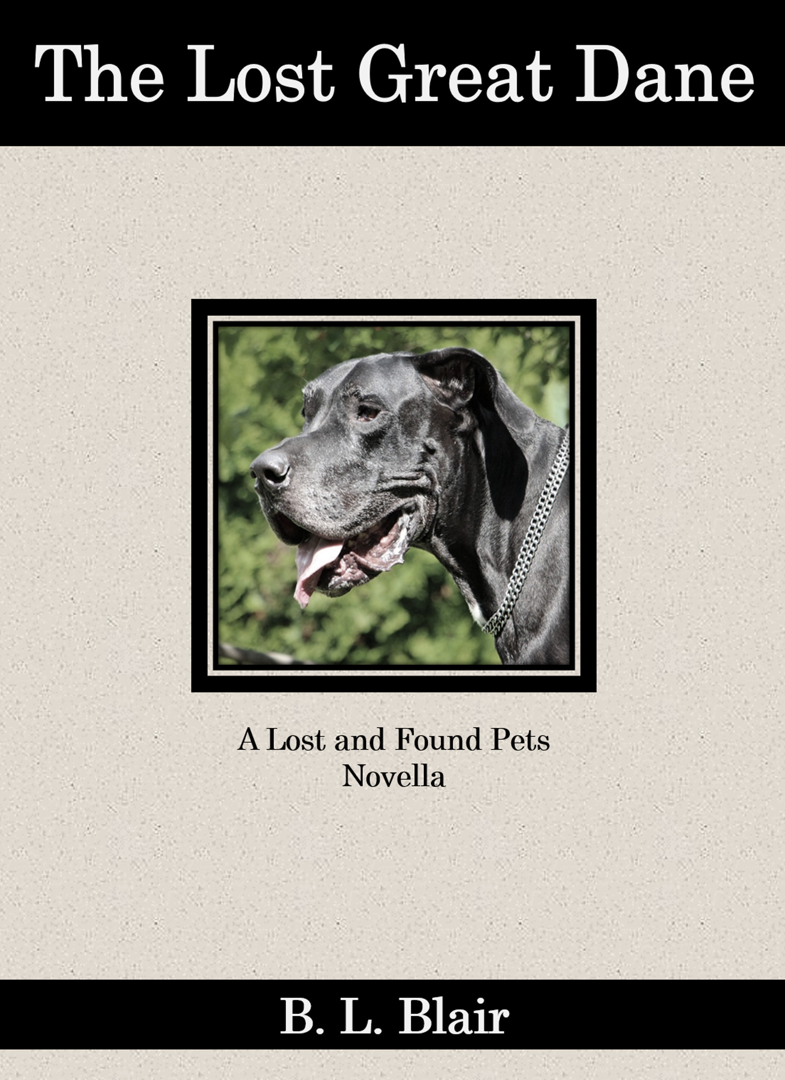 The Lost Great Dane